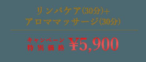 リンパケア(30分)+アロママッサージ(30分)|¥3,900