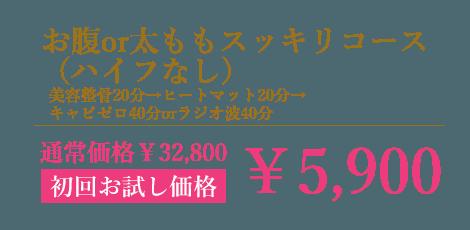 お腹or太ももスッキリコース(ハイフなし)