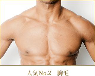 人気№.2|胸毛